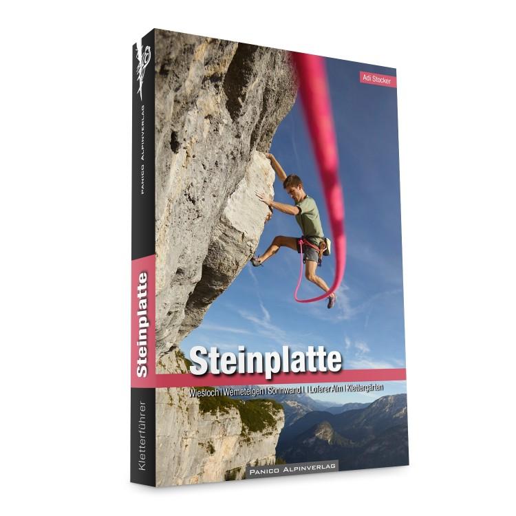 Alpinkletterführer Steinplatte