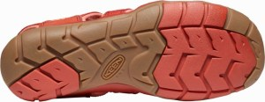 Keen CLEARWATER CNX W dark red/coral Image 1