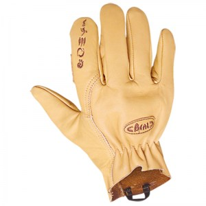 Beal Assure Max Gloves Image 0