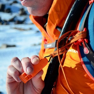 Lifesystems Safety Whistle Image 1